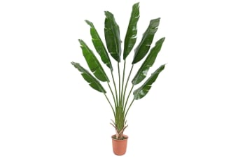 Artificial Potted 210Cm Traveler's Palm Tree