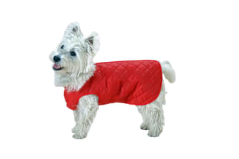Cosipet Showerproof Step-In-Suit For Dogs (Red)