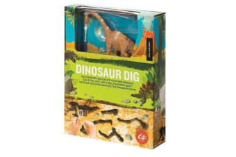 Dinosaur Fossil Kits - Dig Out Excavation Dinosaurs Figure Toys - BRACHIOSAURUS