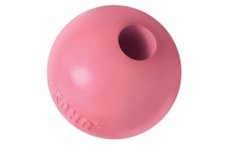 KONG Small Puppy Ball with Hole for Paste & Treats
