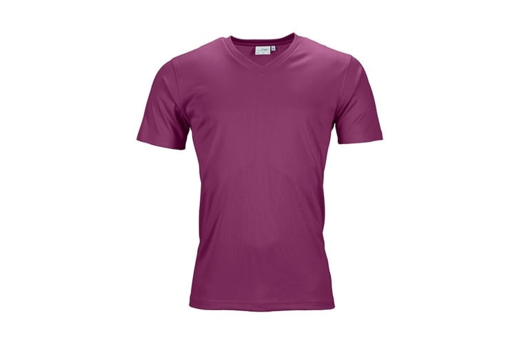James and Nicholson Mens Active V Neck T-Shirt (Purple) (XXL)