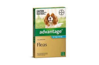 Advantage Dog Medium Aqua - 4p