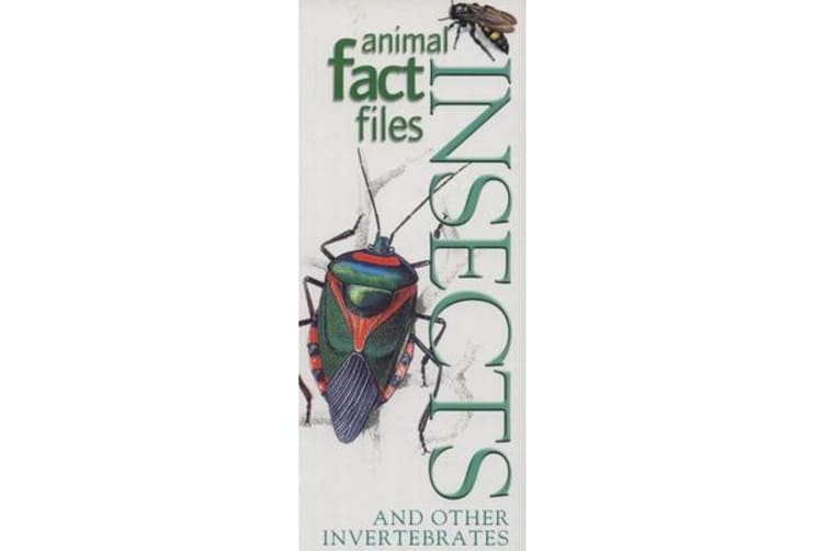 Animal Fact Files: Insects and Other Invertebrates