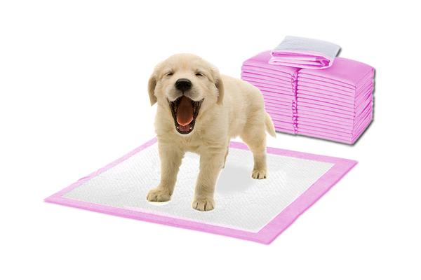 Image of 100 Pcs Puppy Pet Indoor Toilet Training Pads PINK