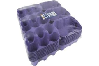 Eton Egg Boxes (Pack Of 24) (Blue) (6 Egg)