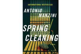 Spring Cleaning - A Novel