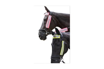 HyVIZ Bridle Set (3 Piece Set) (Pink) (One Size)
