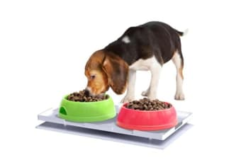 Ant Proof Plate for Dog & Cat Food Bowl - Rectangle