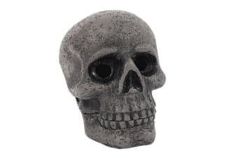 Cabinet Of Curiosities Skull Incense Cone Holder (Grey) (One Size)