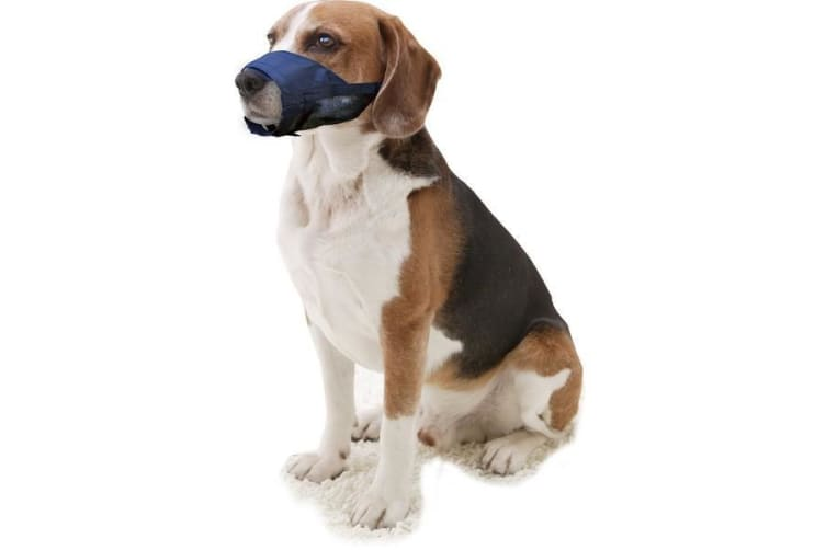 Pawise Adjustable Dog Muzzle (Blue) (M)
