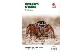 Britain's Spiders - A Field Guide