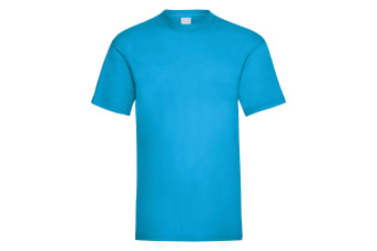 Mens Value Short Sleeve Casual T-Shirt (Cyan) (Medium)