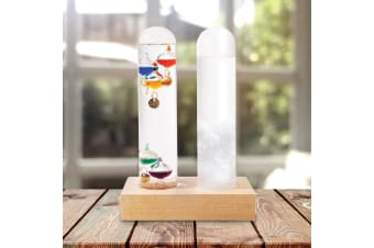 Dual Weather Station | Storm Glass & Galileo Thermometer