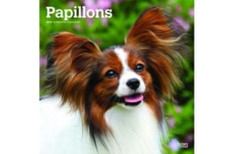 Papillons 2019 Square Wall Calendar