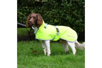 Woofmasta Deluxe Dog Coat (Fluorescent Yellow)