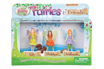 My Fairy Garden Fairies & Friends