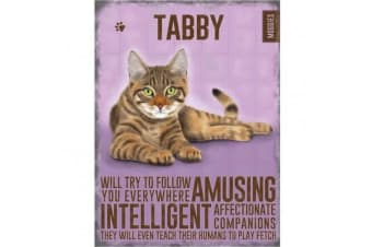Tabby Cat Metal Sign (Pink) (One Size)