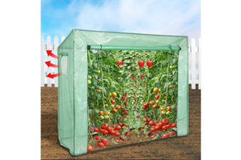 Walk In Greenhouse PE Cover Apex Roof