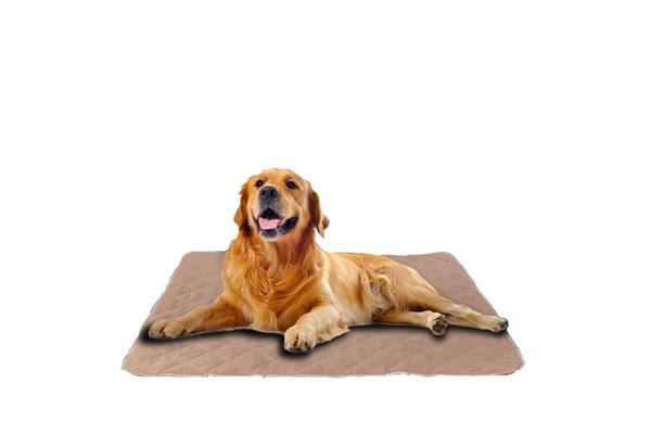 2PCS Waterproof Washable Training Pee Pads - JUMBO