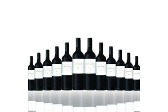 12 Bottles of 2013 The Realist Shiraz 750ML