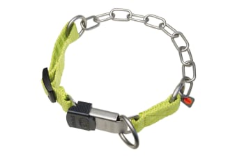 HS Sprenger Combi ClickLock Dog Collar (Green)