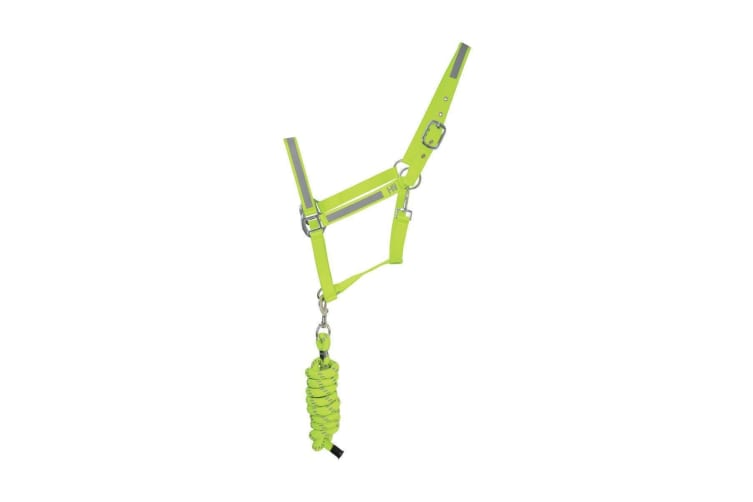 HyVIZ Reflector Head Collar and Lead Rope (Yellow) (Cob)