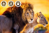 20 Day Africa Tour Including Flights