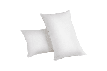 Set of 2 Goose Feather and Down Pillows