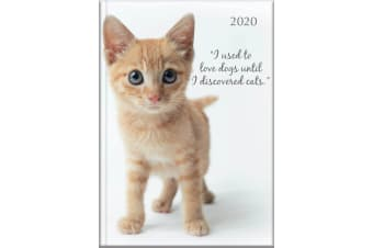 Cute Kittens - 2020 Diary Planner A5 Padded Cover by The Gifted Stationery
