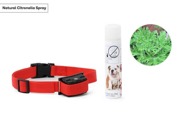 Pawever Pets Anti-Bark Spray Collar
