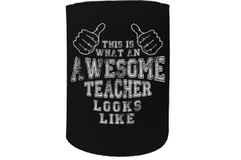 123t Stubby Holder - this awesome teacher - Funny Novelty