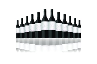 12 Bottles of 2019 Cheeky Whispers Shiraz 750ML