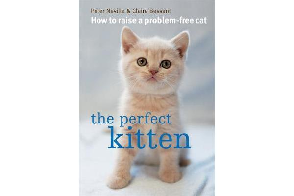 The Perfect Kitten - How to Raise a Problem-Free Cat
