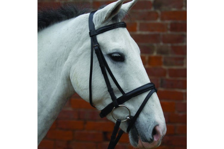 Hy Padded Flash Bridle with Rubber Grip Reins (Black) (X-Full)