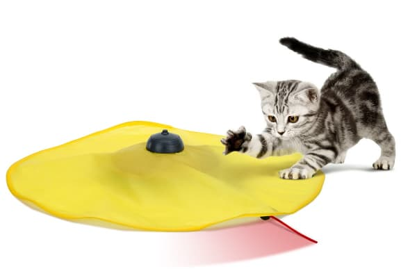 Pawever Pets Cat Toy