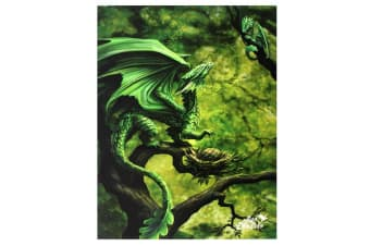 Age Of Dragons 19x25cm Forest Dragon Canvas (Green)