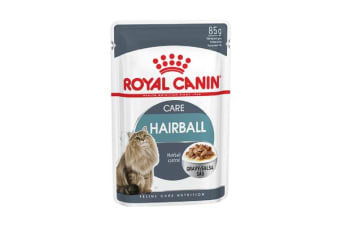 Royal Canin Hairball Care in Gravy - 1 Pack