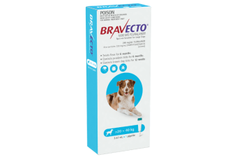 Bravecto SPOT-ON for Large Dogs 20-40kg - Blue (6 Months)
