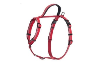 The Company Of Animals HALTI Walking Harness (Red)