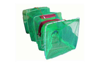 Seahorse Collapsible Shrimp/Bait Trap With 2 Inch Entry Rings