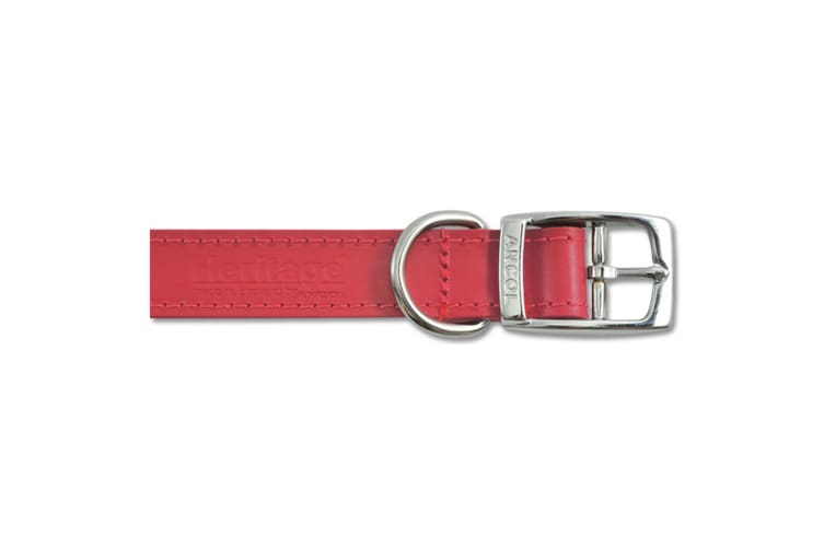 Ancol Pet Products Heritage Buckle Up Leather Dog Collar (Red) (39-48cm (Size 5))