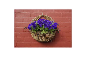 Ambassador Rattan Wall Basket (Brown)
