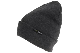 3M Thinsulate Adults Pro Climate Beanie (Grey) (One Size)