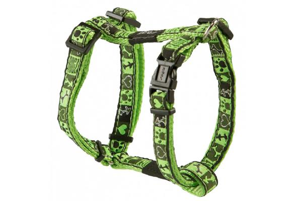 Rogz Fancy H Harness Lime Juice - S