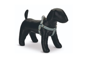 Beeztees Designed By Lotte Nylon Virante Dog Harness (Mint) (Small)