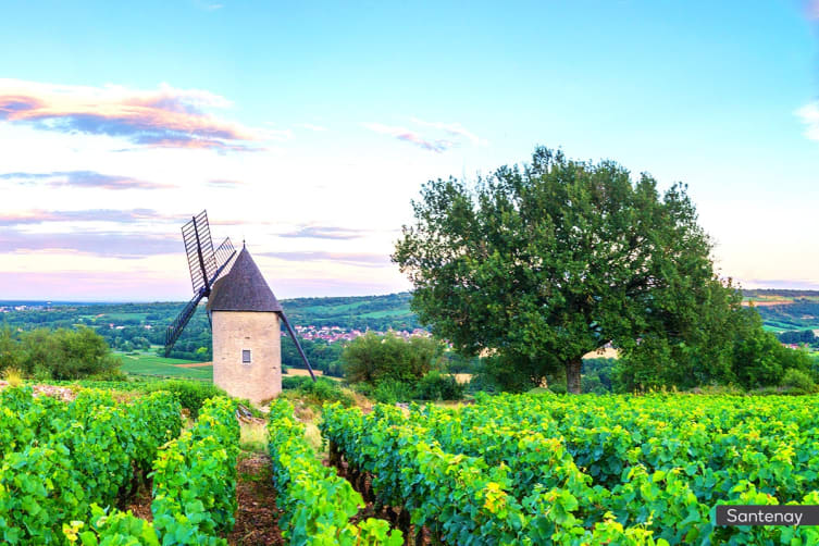 FRANCE: 8 Day Burgundy Tour with River Cruise for Two