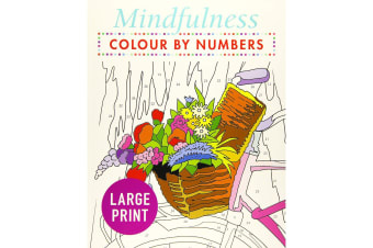 Mindfulness Colour-by-Numbers Large Print