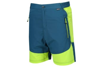 Regatta Mens Sungari Shorts (Sea Blue/Lime Punch) (32in)