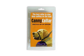 Canny Dog Training Collar (Purple) (1)