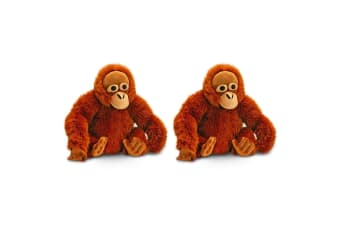 2PK Keel 45cm Kids/Children Ollie Orangutan Monkey Plush Soft Stuffed Toy BRW